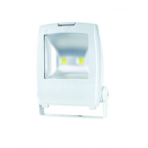 http://www.led-flash.fr/294-1016-thickbox/projecteur-led-plat-50-watt-eq-400-watt.jpg