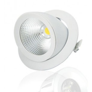 Spot LED COB Escargot 30W