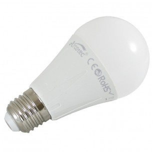 Ampoule led E27 10 watt (eq. 60 watt)