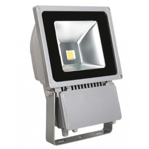 http://www.led-flash.fr/547-1956-thickbox/projecteur-led-100-watt-eq-700-watt.jpg