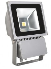 Projecteur LED COB 80W I Led Flash