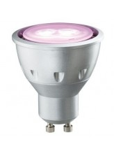 Spot led GU10 5 watt Rose | Led Flash